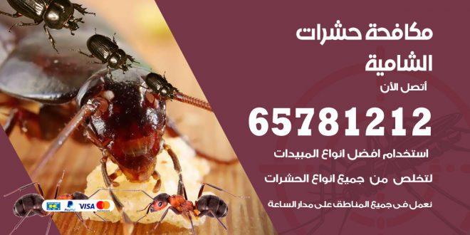 مكافحة حشرات الشامية