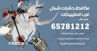 مكافحة حشرات شمال غرب الصليبيخات