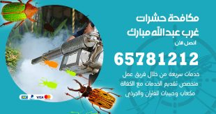 مكافحة حشرات غرب عبدالله مبارك