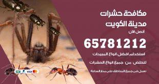 مكافحة حشرات العاصمة